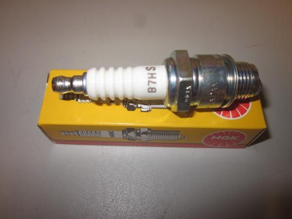 DSCF 10977